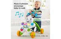 Hot Sale Fisher-Price Learn with Me Zebra Walker Baby Walker