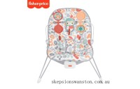 Discounted Fisher-Price Sweet Summer Blossoms Baby Bouncer