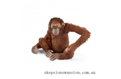 Discounted Schleich Orangutan female