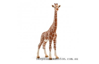 Genuine Schleich Female Giraffe