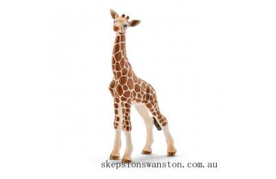 Genuine Schleich Giraffe Calf