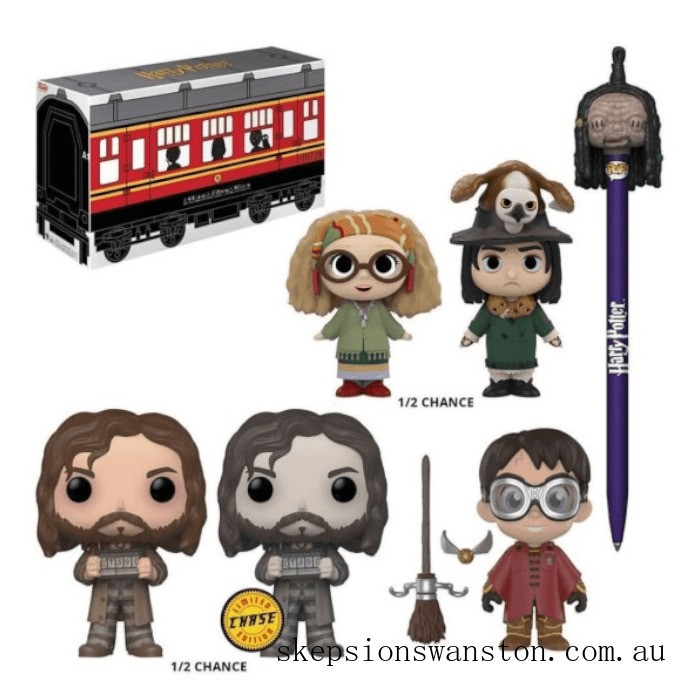 Funko Harry Potter EXC Mystery Gift Box Clearance Sale