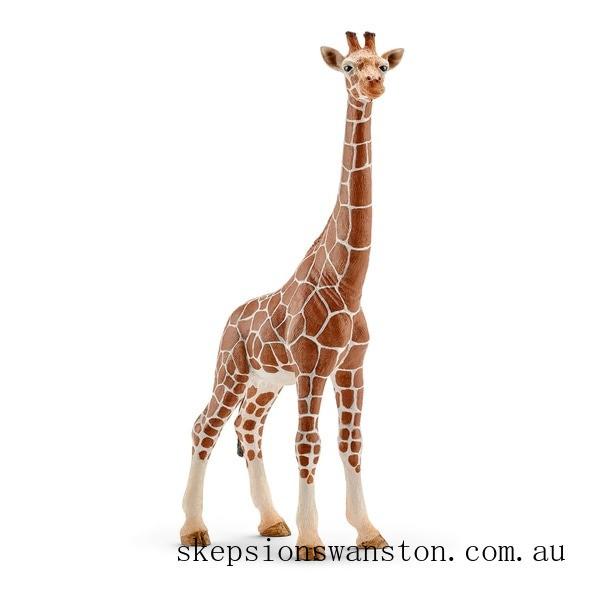 Genuine Schleich Female Giraffe