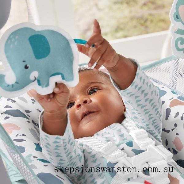 Discounted Fisher-Price Take-Along Baby Swing & Seat - Terrazzo