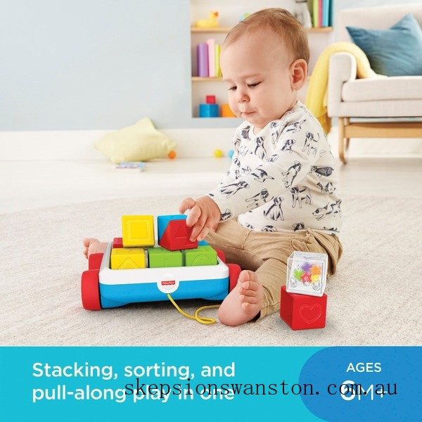 Clearance Fisher-Price Pull-Along Activity Blocks